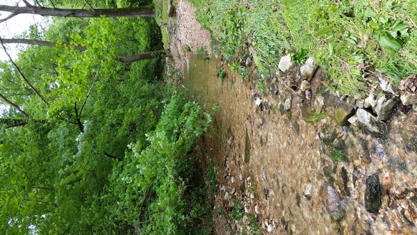 Brocksmith Creek after flooding April 2017 2